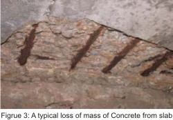 Designing Reinforced Concrete Structures for Long Life Span