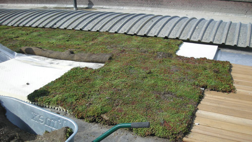 Polygrow® - Green Roof Solution