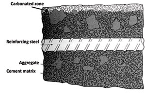 Steel Protected in Carbonated Concrete