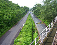 Green National Highways