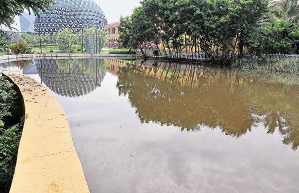 Lake For Groundwater Recharge at Infosys Campus