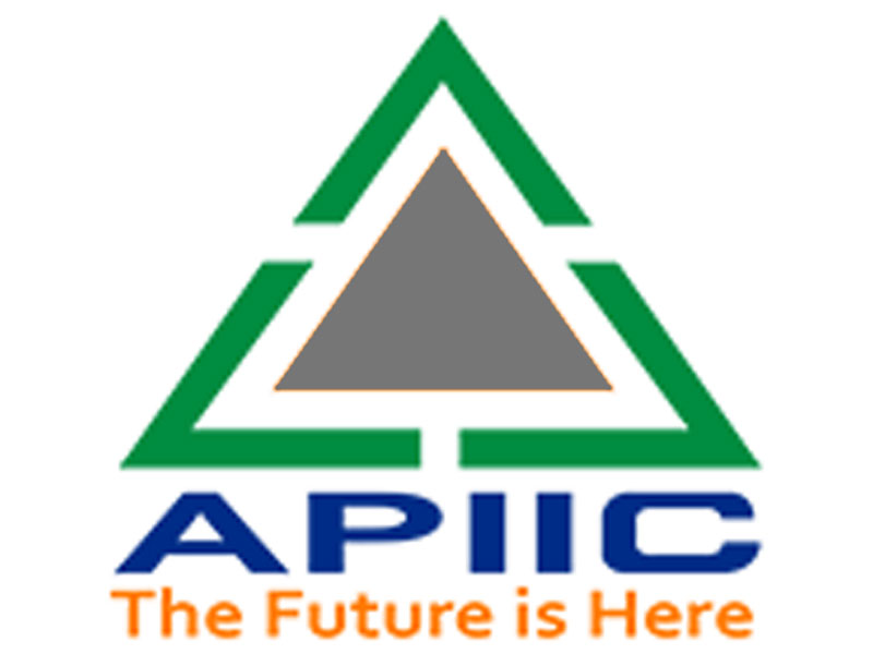 Andhra Pradesh Industrial Infrastructure Corporation (APIIC)